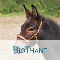 Biothane_neu