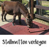 Stallmatten - eBook