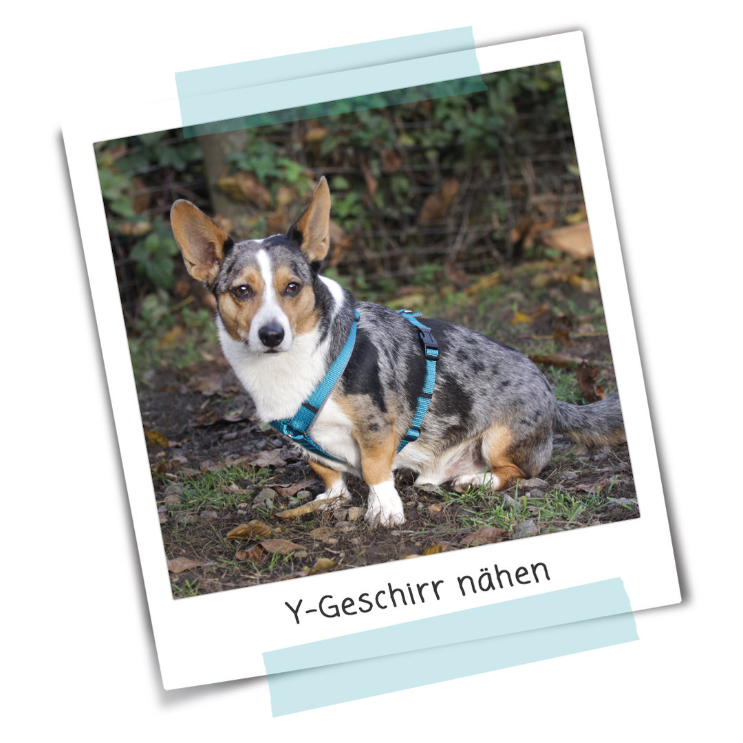 Anleitung 182 Y Geschirr Nordfalben Shop